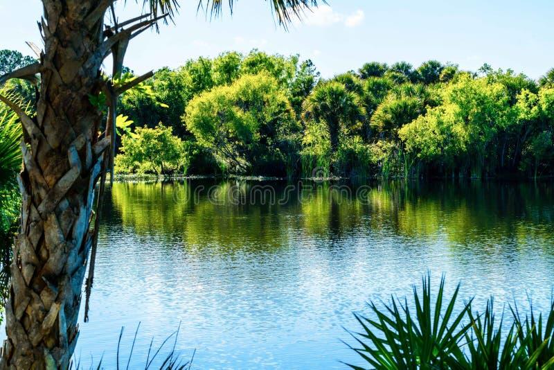 Una tarde caliente de la primavera en el sudoeste la Florida imágenes de archivo libres de regalías