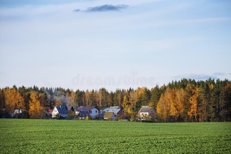 Una tarde hermosa del otoño en un pueblo del bosque foto de archivo libre de regalías
