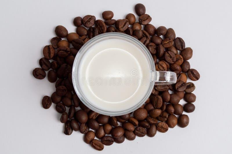 Una taza de cristal de leche se está colocando por completo en una pila de granos de café foto de archivo libre de regalías