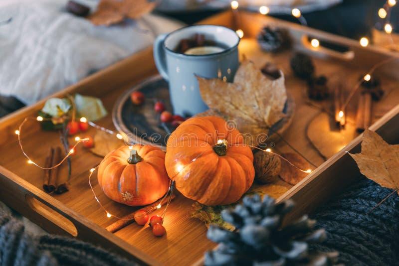 Una taza de té Composición y calabaza del otoño de la comodidad imagenes de archivo