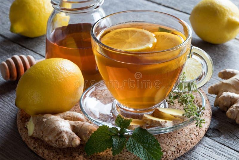 Una taza de té con la raíz, el limón, el toronjil y la miel del jengibre foto de archivo