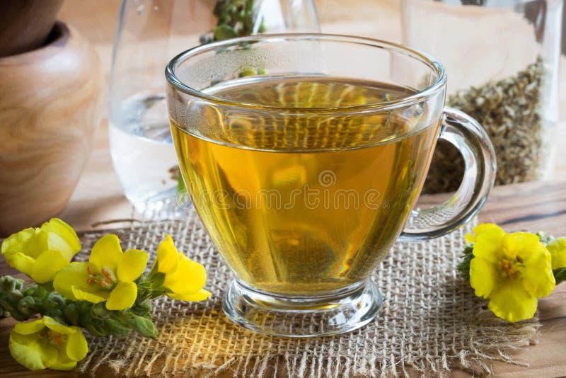 Una taza de té del verbascum del mullein con el mullein florece fotos de archivo libres de regalías