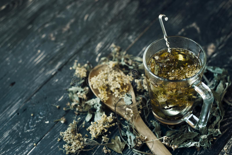 Una taza de té herbario imagen de archivo libre de regalías