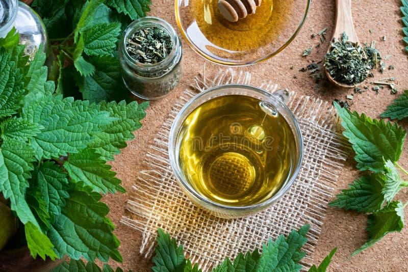 Una taza de té de la ortiga con las ortigas frescas y secas fotografía de archivo libre de regalías