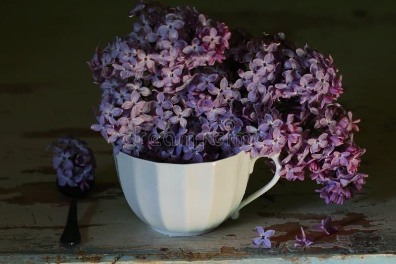 Una tazza dei lillà fotografia stock