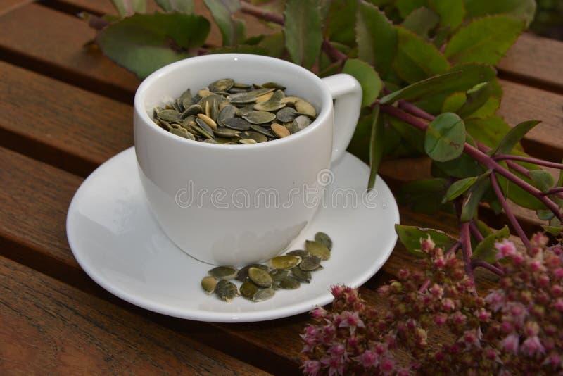 Una tazza dei semi di zucca fotografia stock