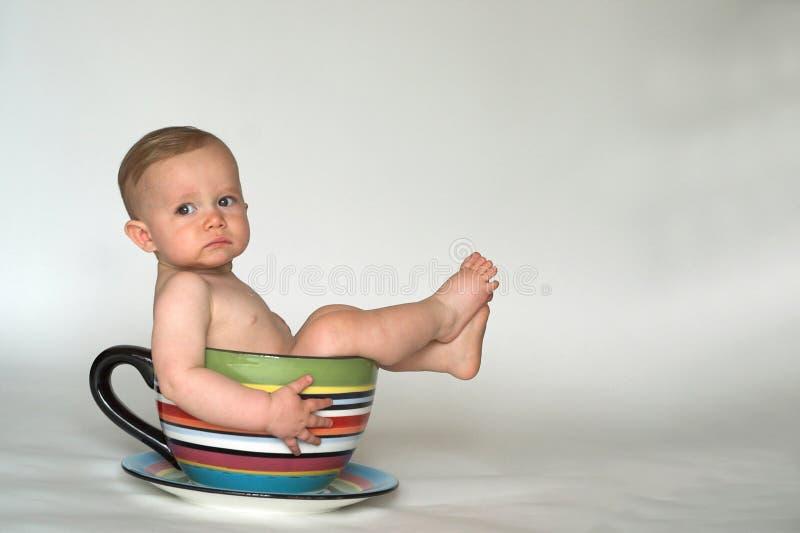 Una tazza del bambino immagine stock libera da diritti