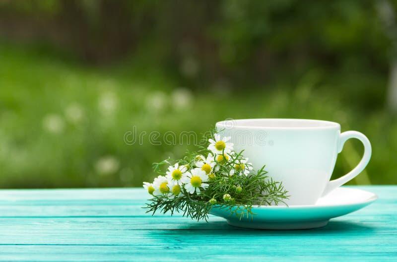 Una tazza del tè di camomilla fragrante nel giardino Una bevanda calda utile con i fiori della camomilla Medicina naturale fotografia stock