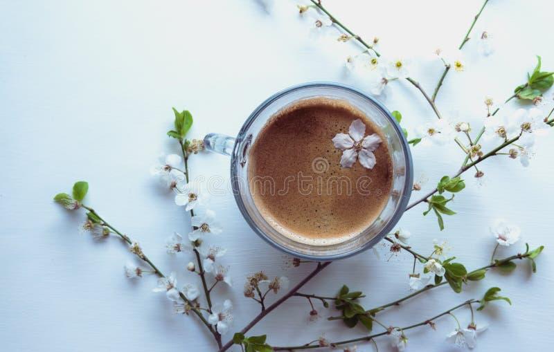 Una tazza di caffè e della molla aromatici fiorisce su un fondo bianco immagine stock libera da diritti