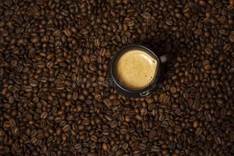 Una tazza di caffè nero con latte che sta sui chicchi di caffè Un concetto sano della prima colazione fotografia stock