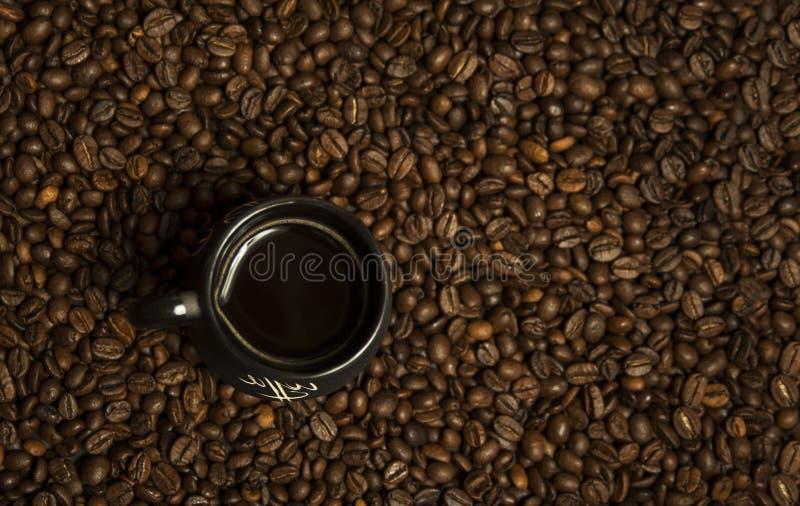 Una tazza di caffè nero con latte che sta sui chicchi di caffè Un concetto sano della prima colazione immagini stock libere da diritti