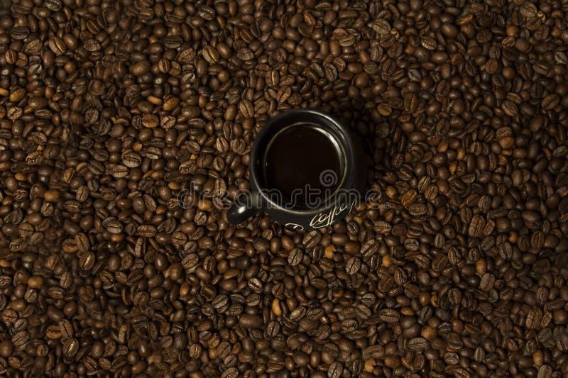 Una tazza di caffè nero con latte che sta sui chicchi di caffè Un concetto sano della prima colazione immagine stock