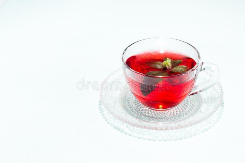 Una tazza di tè con la menta immagini stock libere da diritti