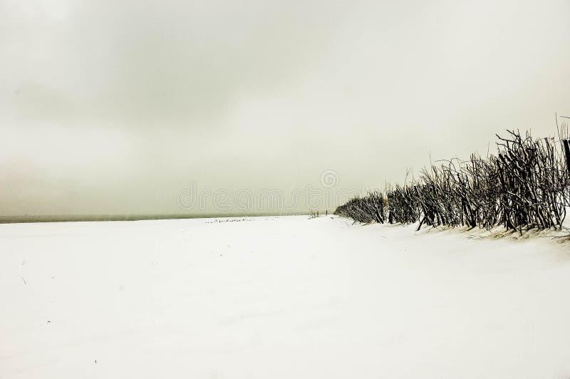 Una tempesta spettacolare della neve sulla spiaggia sabbiosa fotografia stock libera da diritti