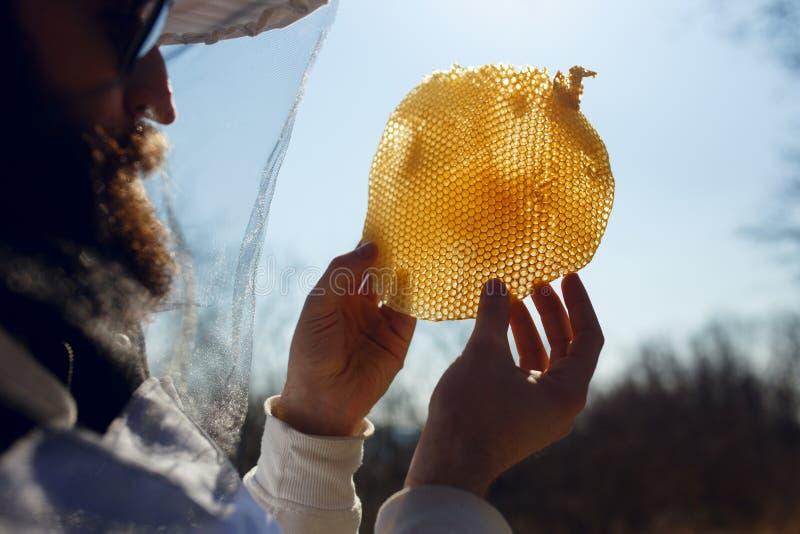 Una tenencia del apicultor y examina un fragmento en el panal vacío en fondo del cielo del sol Tiro exterior horizontal fotos de archivo