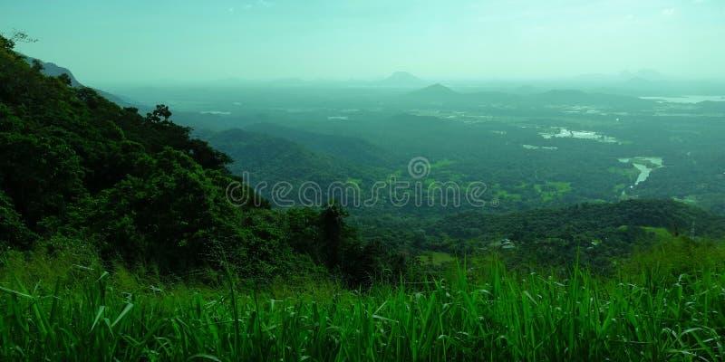 Una tierra verde llena hermosa y del color imágenes de archivo libres de regalías