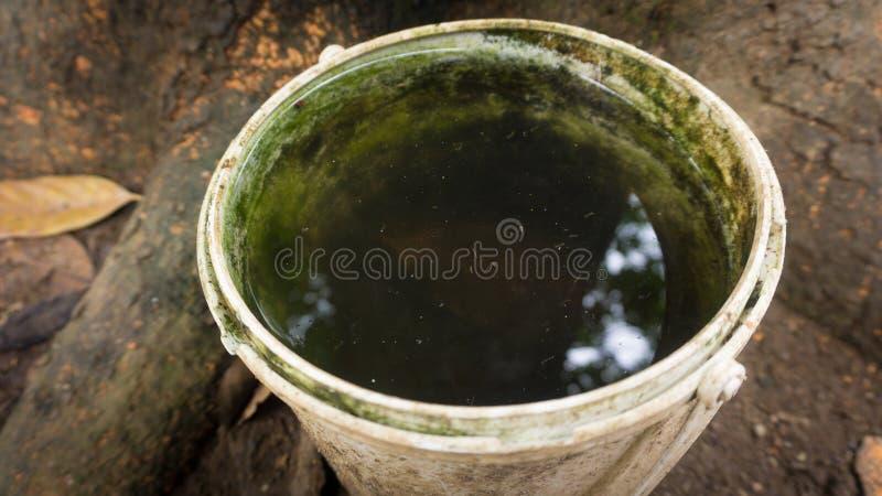 Una tina plástica con los ahorros del mosquito en malaria de la causa del agua dulce foto de archivo libre de regalías
