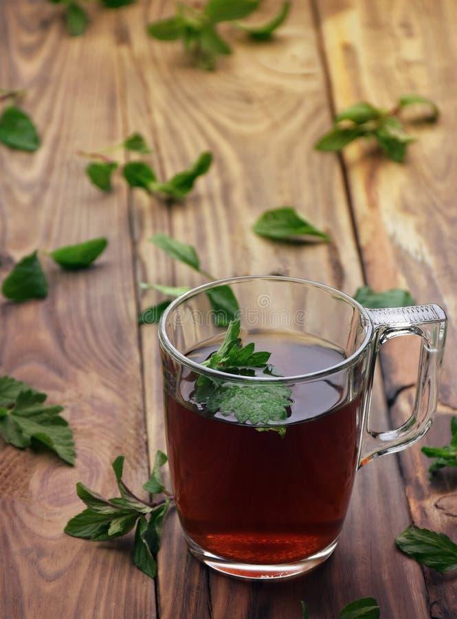 Una tisana fragrante con le foglie di menta, la melissa, i lamponi e l'uva passa Primo piano Una tazza di tisana su un fondo di l fotografia stock libera da diritti