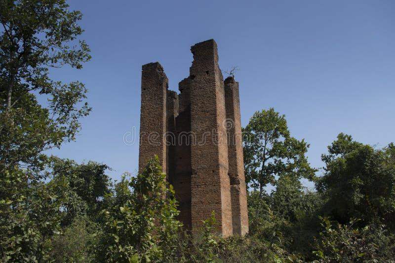 Una torre antica nella giungla di Burdwan, Bengala, India che è stata usata per guardare l'animale selvatico e per cercare fotografie stock libere da diritti