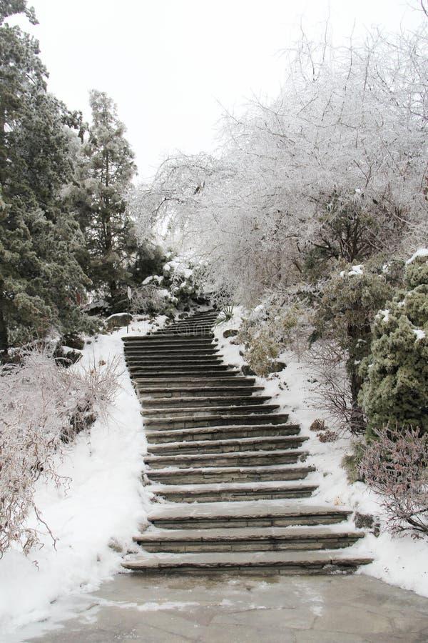 Una trayectoria en invierno fotos de archivo
