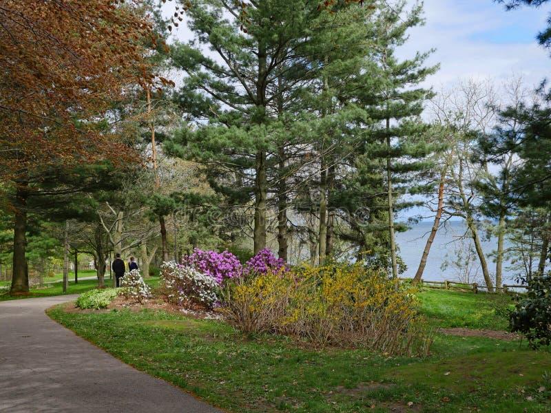 Una trayectoria sombría a través de un parque en la ruta del rastro de la costa de Toronto fotos de archivo libres de regalías