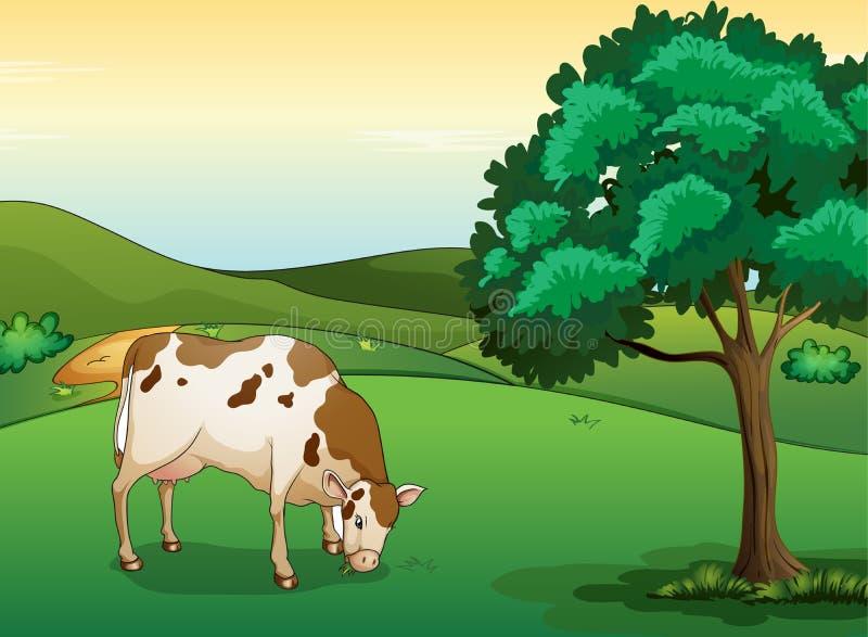 Una vaca que come la hierba stock de ilustración