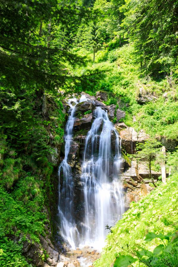 Una valle con una cascata in montagne vicino alla stazione sciistica in natura russa vicino a Soci, Caucaso della foresta tropica fotografia stock