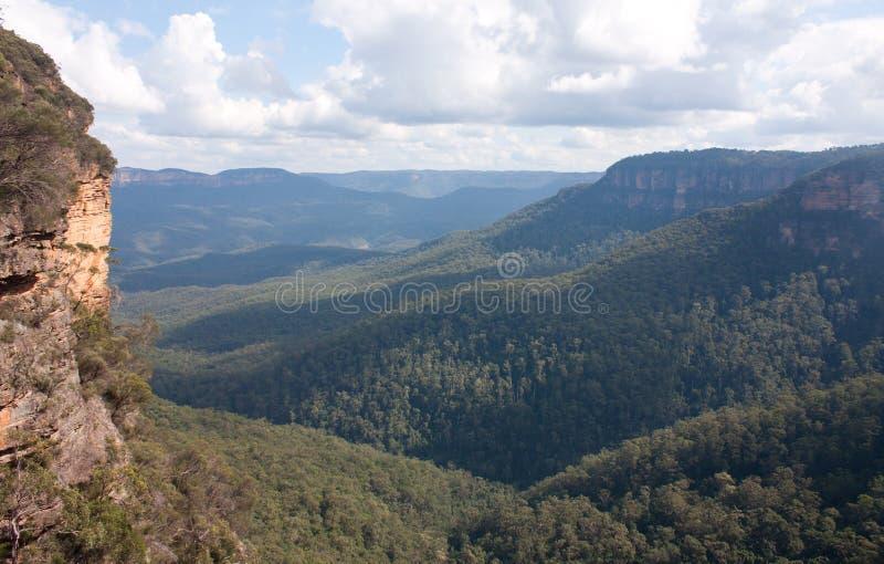 Una valle vicino a Wentworth Falls nelle montagne blu in Australia immagine stock libera da diritti