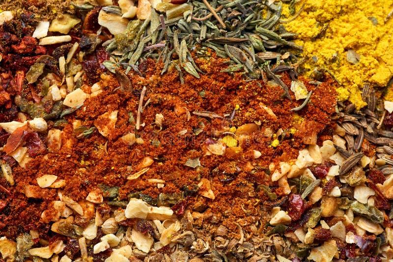 Una variedad de especias y de primer de las hierbas Fondo del alimento imagenes de archivo