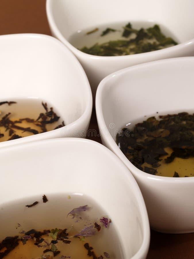 Una variedad de tés fotos de archivo libres de regalías
