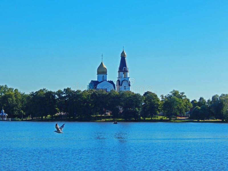 Una vecchia chiesa vicino al lago con un gabbiano che vola vicino immagini stock