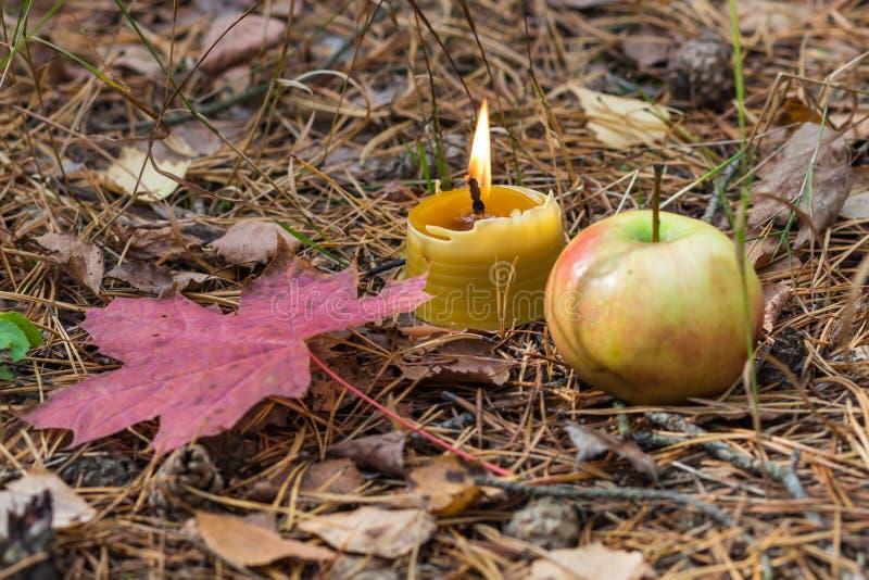 Una vela ardiente con las hojas de la manzana y del rojo imágenes de archivo libres de regalías