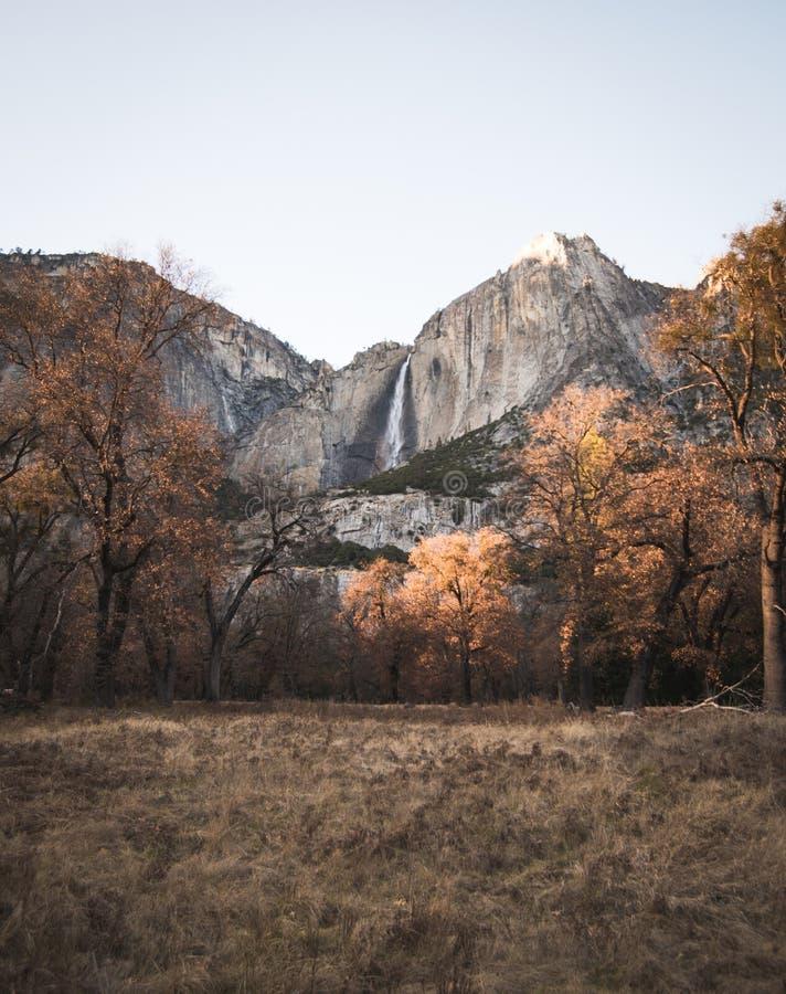 Una visión imponente a través de las hojas de oro del otoño de las caídas imagen de archivo libre de regalías
