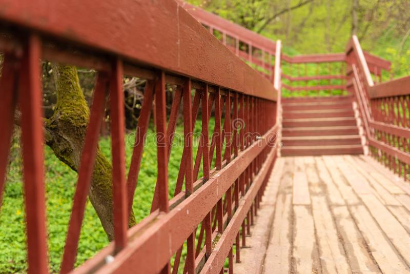 una visión, mirando abajo desde arriba de una escalera de madera larga situada en una pieza del bosque de una pista de senderismo fotografía de archivo libre de regalías