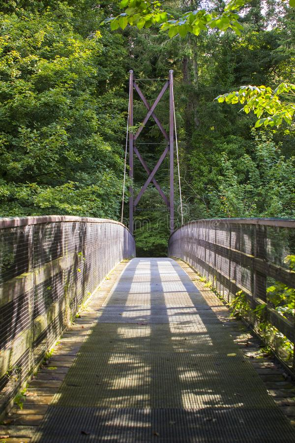 Una visión a través del puente invertido de la cuerda de arco a través del río de las huevas en el parque del país de Roe Valley  imagen de archivo