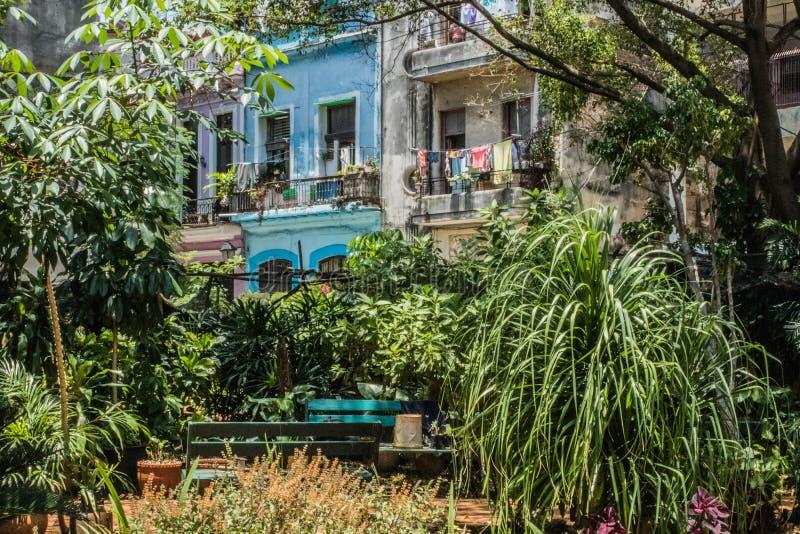una visita de la tarde a La Habana fotografía de archivo