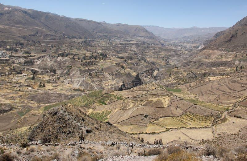 Una vista aerea del canyon di Colca immagini stock libere da diritti
