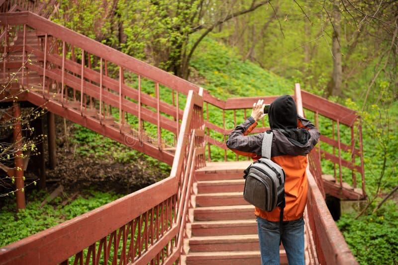 una vista, cercante per la cima di una scala di legno lunga situata in una parte della foresta di una traccia di escursione ed us immagini stock libere da diritti