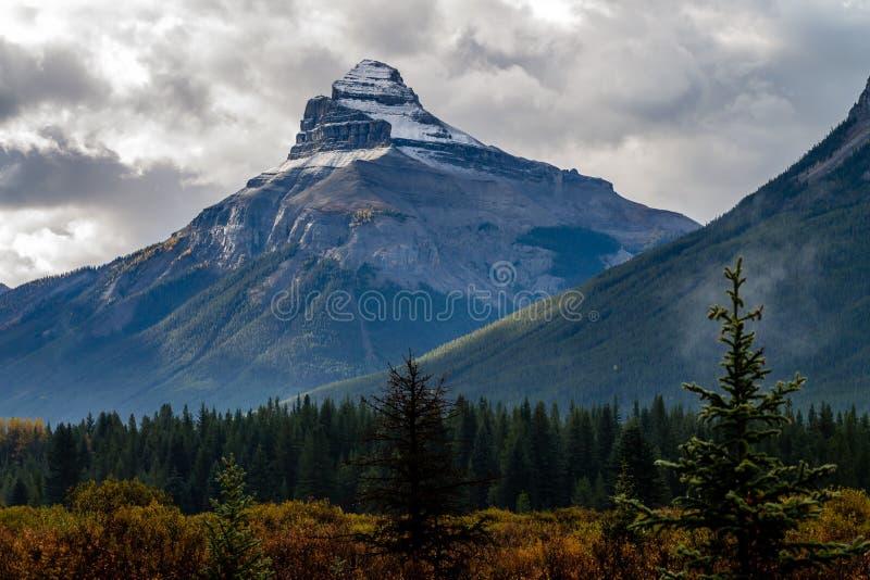 Una vista dalla strada panoramica del giacimento di ghiaccio, parco nazionale di Banff, Alberta, Canada immagini stock libere da diritti