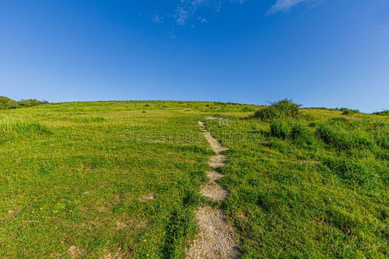 Una vista de una cuesta verde herbosa con una trayectoria del rastro que lleva a la cumbre debajo de un cielo azul majestuoso fotos de archivo libres de regalías