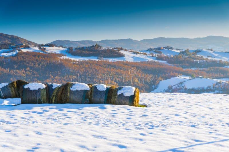 Una vista de la bala de heno con nieve foto de archivo