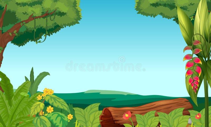 Una vista de la selva ilustración del vector