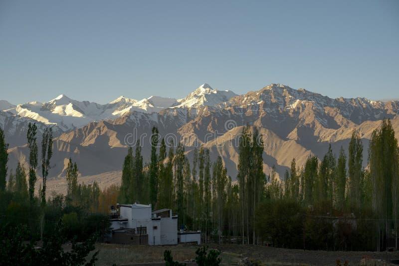 Una vista de los árboles de la montaña y de pino con nieve en el top en el tiempo del día en Leh, Ladakh, la India fotos de archivo