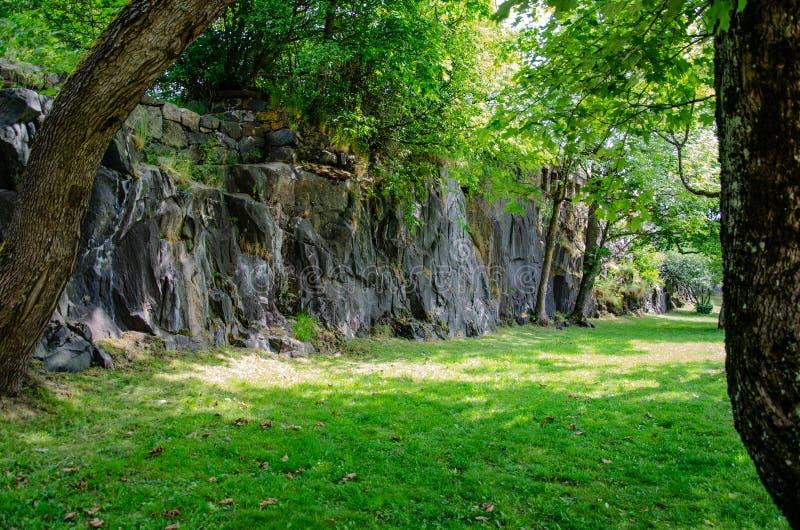 Una vista de una roca y de un césped en la sombra de un árbol del día soleado foto de archivo libre de regalías