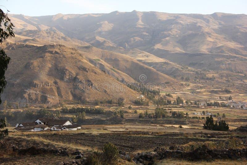 Una vista del canyon di Colca fotografia stock