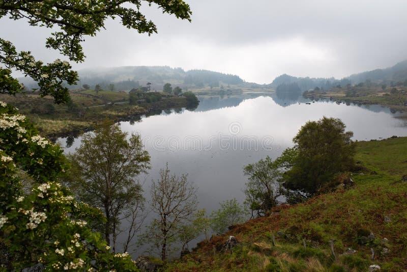 Una vista del lago de Looscaunagh del jefe del lago en el anillo de Kerry en el parque nacional Irlanda de Killarney fotos de archivo