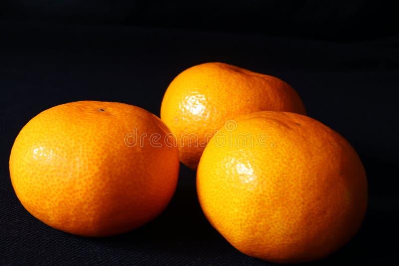 Una vista di angolo di tre frutti arancio del mandarino contro fondo nero, citrus reticulata scientifico di nome immagini stock