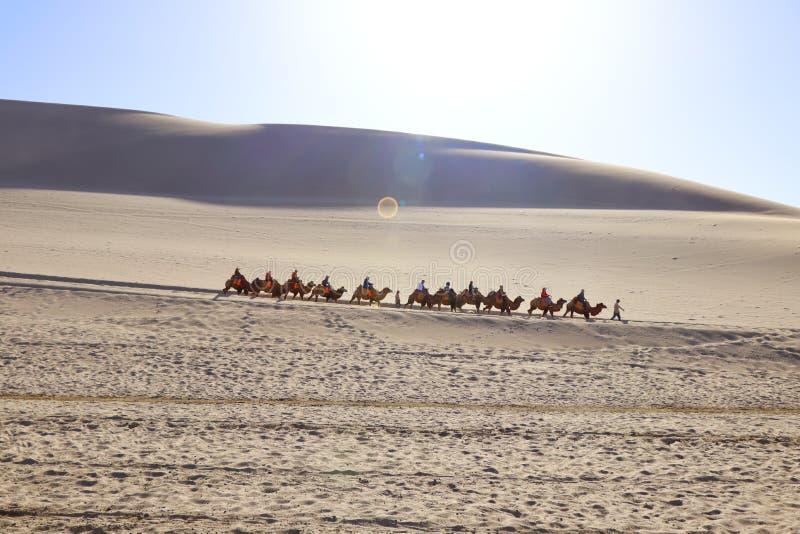 Una vista di distanza di un giro del caravan del cammello che passa attraverso le dune di sabbia nell'ambito della luce solare in fotografia stock