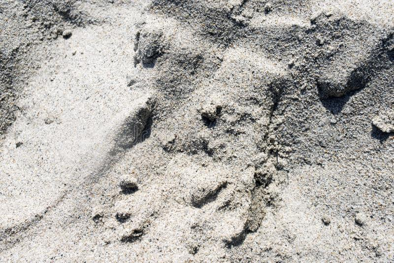 Una vista di una sabbia alla spiaggia per la carta da parati, il fondo o i contesti immagini stock