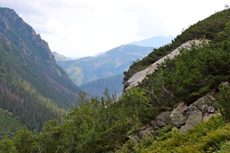 Una vista di una valle di 5 laghi in alto Tatras fotografia stock